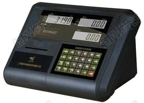 XK3190-A23p
