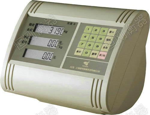 XK3190-A25