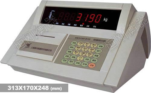 XK3190—D10P