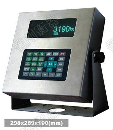 XK3190-DS2