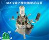 长期供应GSA-2磁力搅拌微型反应釜
