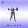 高压压力泵,高压压力源,压力仪表
