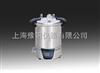 SYQ.DSX-280B不锈钢电热蒸汽灭菌器