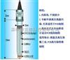 B.J.C 高温/高压/发酵专用氧化还原电极E-900