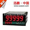 SPA-96BDE苏州迅鹏SPA-96BDE双屏显示直流电能表