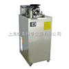 YXQ-LS-100A【*】立式压力蒸汽灭菌器