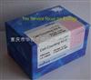 CK04-500 cck-8试剂盒CCK-8细胞活性检测试剂