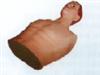 KAH-BN心包穿刺与心内注射仿真电动模型