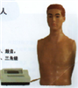 KAH-KJ心肺叩诊电脑模拟人