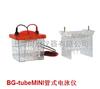 BG-tubeMINI管式电泳仪(与BG-verMINI型迷你垂直电泳仪配套使用)