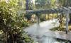 大型环保浙江景区园林造雾系统直销