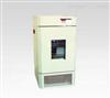 BDP-250CO2二氧化碳人工气候箱,上海人工气候箱厂家