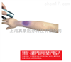 ZK-H11针灸训练手臂模型(辅助)