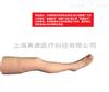 ZK-100011F针灸腿部训练模型(辅助)