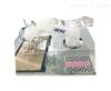 BEVS 3228 机器人自动涂膜工作站